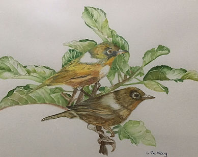 Gaye McKay - The Two of Us.jpg Male a female birds with light freen foliage