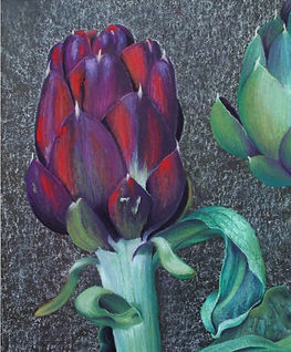 Artichoke by Chris Boulsover.red and purple artichoke with pale green leavespg