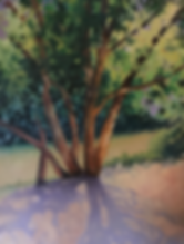 L Bridges Tree with shadows in mauve
