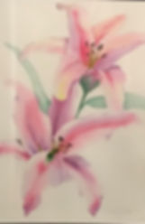 lilies 1.jpg