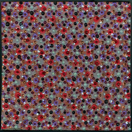 7 celano 2006 6x6