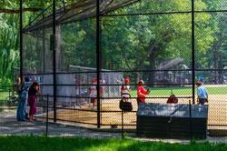 CP Baseball