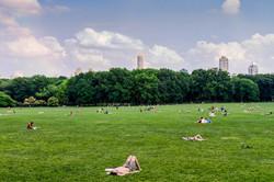 central park 0455