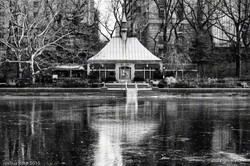 CP Pond in Winter