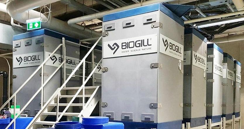 BioGill 1.jpg