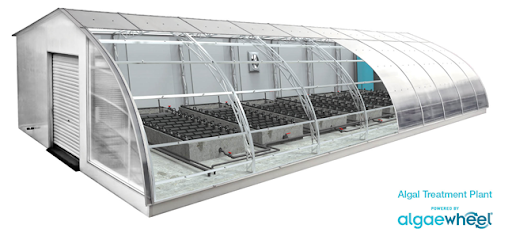 algaewheel - dome (3).png