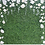 Thumbnail: Green Wall with White Flowers