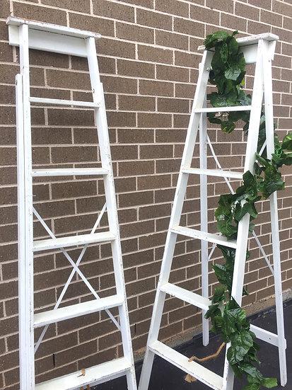 White Rustic Ladder