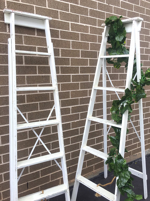 White Rustic Ladder