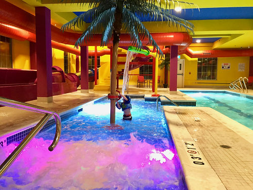 "Regina, Sk Comfort Suites Activity Pool, Palm Tree, Color pool Lights, Pool Bubblers, Pool Bubbler, Splash Toy, Sheet of water, Stainless Steel Handrail, Yellow stucco walls, Kid Playing in pool, Federal Stone,  White Coping stones, Inlays Depth Marker, Blue 2"" x 2"" Tile"