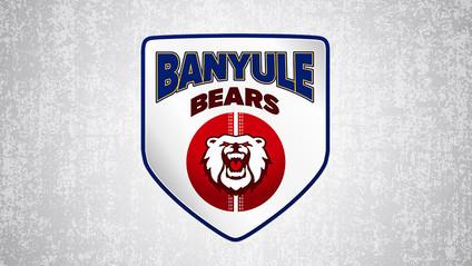 Banyule Cricket Club seeking Senior Coach for season 2021/22
