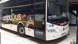 """Livrées """"Anjoubus"""""""
