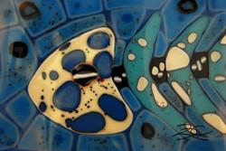 Fish Bones Close Up