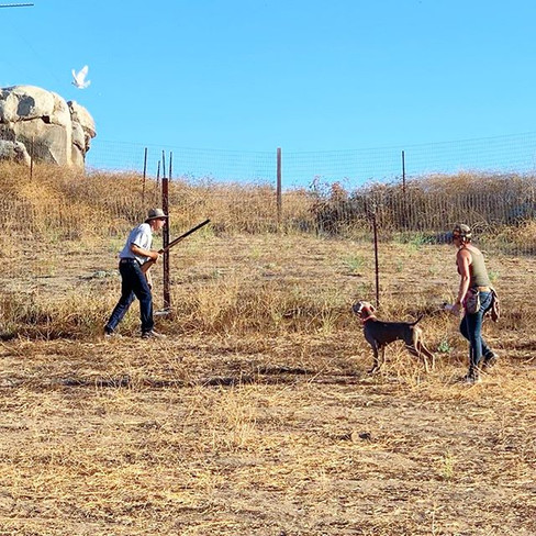working steady to shot at the Flemming Ranch