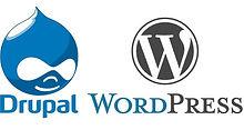 wordpress-drupal.jpg