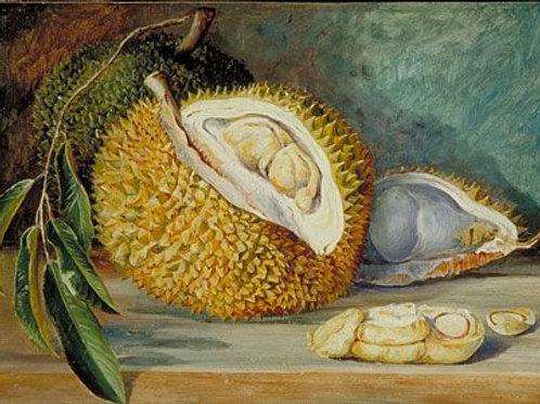 Vegetarische pulled jackfruit snack box 4 personen