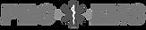 Pro Ems Logo.png