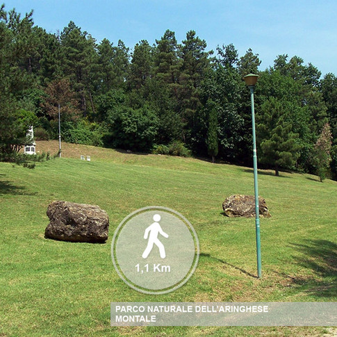 Parco dell'Aringhese Montale