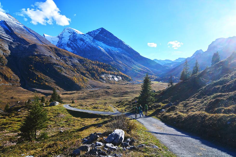 Альпийская классика #3 Радиалка в осень.