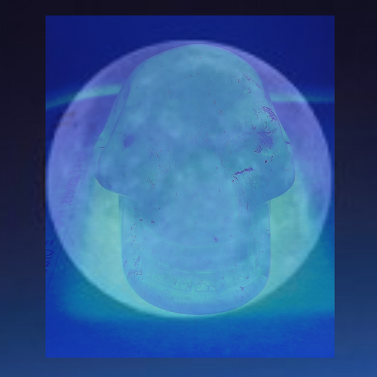 The Moon's So Pale