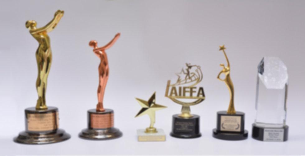 Mariano Saulino Awards