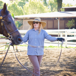 Bennett farms, los angeles equestrian center, laec, burbank, horse, horseback, riding, lessons, lunge, lead line, horse, equine, saddle seat, american saddlebred, horse trainer, lessons, barn, stables