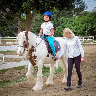 horse, lesson, saddle seat, trainer, gypsy cobb, student, equestrian, Bennett Farms