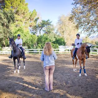 american saddlebred, laec, equestrian center, bennett farms, jim bennett, sharon grosshans, los angeles, horse lessons, riding lessons, horse, group lesson, horseback, riding, burbank, horse, mare, gelding, teaching, equestrian, equine, horse, pony, riding