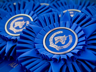 California Saddle Horse Futurity Results