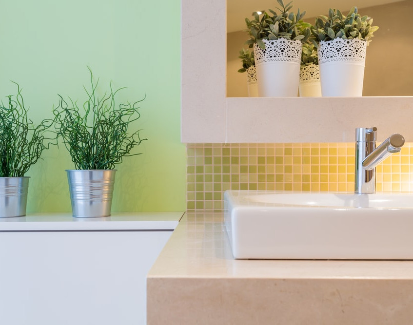 best-bathroom-plants-min