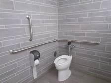 Accessible bathrooms handles 2