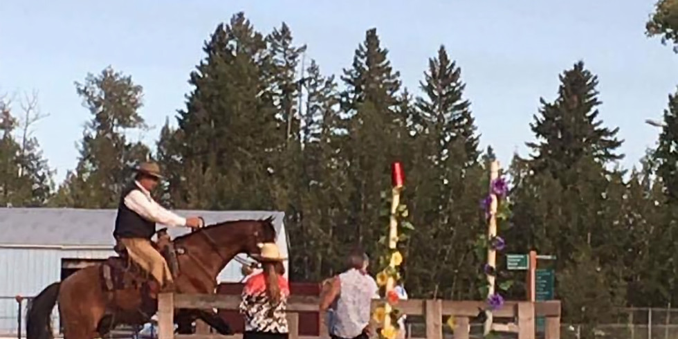 Intro to Working Equitation