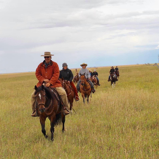 Horsemanship Retreat Stavely, AB