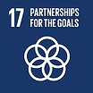 SDG 17 partnerships for the goals.png