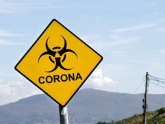 What is going on with the Coronavirus aka Covid 19 aka Corona Virus aka Wuhan Virus?