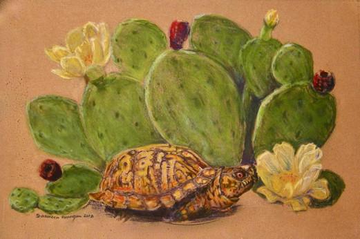 Happy turtle