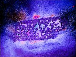 CRW_5503 fete farger 09132005