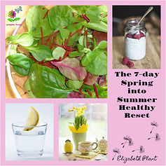 Spring into Summer Healthy Reset cover.j
