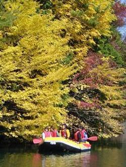 raft picnic3