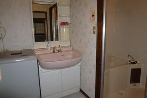 Condo washing machine & bathroom.JPG
