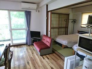 Condo living room3.JPG