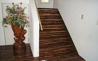 Condo stairs(no elevator).JPG