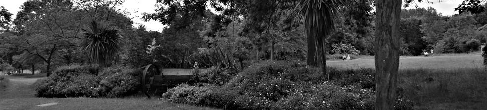 Brent lodge park 2.jpg