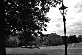 Churchfields 3.jpg