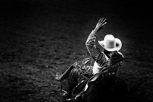 rodeo pic cowboy.jpg
