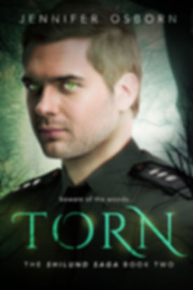 Torn_Final HIGH Res.jpg