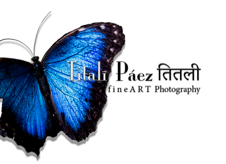 Titalī Páez तितली F i n e A R T Photography