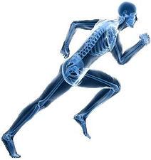 Oxford Osteopaths Image.jpg
