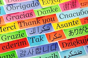 multilingual_reditshutterstock.jpeg