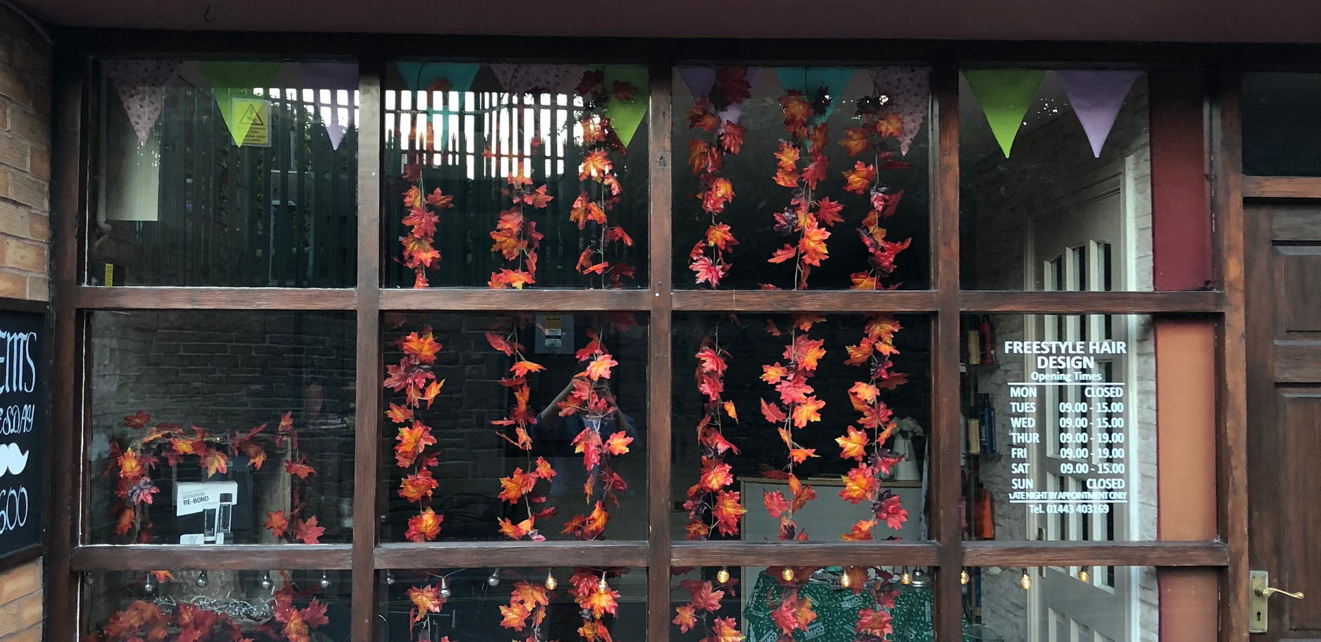 Freestyle Autumn Window